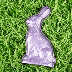 Giant Milk Chocolate Foiled Bunny