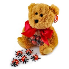 Humphrey Bear with Peanut Butter Ladybugs